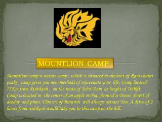MOUNTLION CAMP