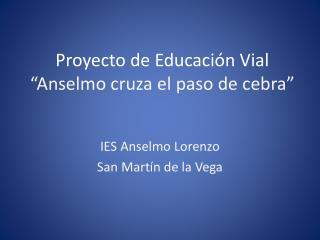 """Proyecto de Educación Vial """"Anselmo cruza el paso de cebra"""""""