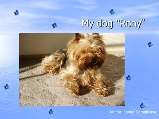 """My dog """"Rony"""""""