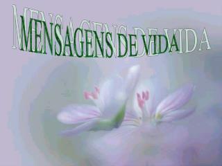 MENSAGENS DE VIDA
