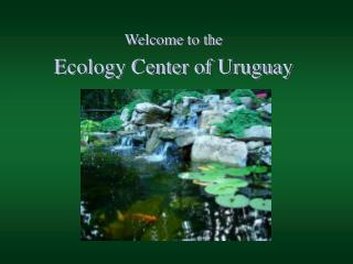 Welcome to the  Ecology Center of Uruguay