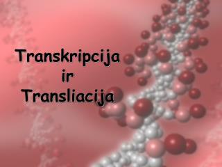 Transkripcija ir Transliacija