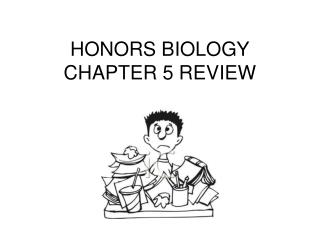 HONORS BIOLOGY CHAPTER 5 REVIEW