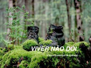 VIVER NÃO DÓI (Carlos Drummond de Andrade)