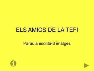 ELS AMICS DE LA TEFI