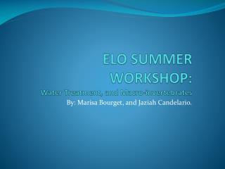 ELO SUMMER WORKSHOP: Water Treatment, and Macro-invertebrates