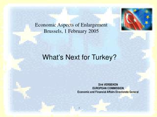 What's Next for Turkey?