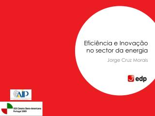 Eficiência e Inovação no sector da energia Jorge Cruz Morais