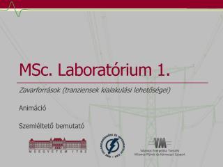 MSc . Laboratórium 1.