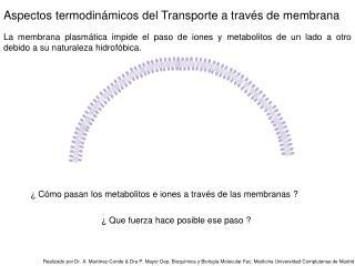 Aspectos termodinámicos del Transporte a través de membrana