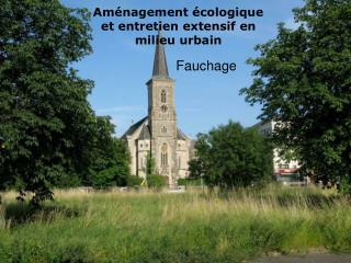 Aménagement écologique et entretien extensif en milieu urbain
