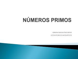 N MEROS PRIMOS