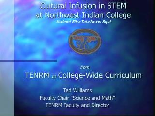 "Ted Williams Faculty Chair ""Science and Math"" TENRM Faculty and Director"