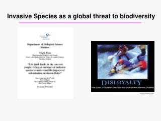 Invasive Species as a global threat to biodiversity