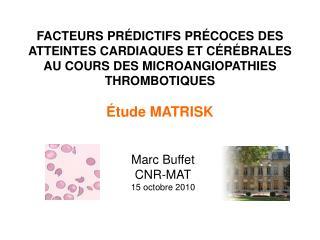 Marc Buffet CNR-MAT 15 octobre 2010