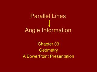 Parallel Lines Angle Information
