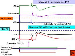 Potentiel d'inversion des PPSI