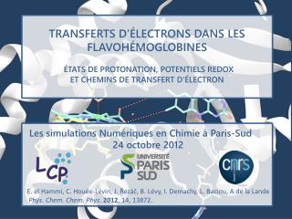 TRANSFERTS D'ÉLECTRONS DANS LES FLAVOHÉMOGLOBINES ÉTATS DE PROTONATION, POTENTIELS REDOX