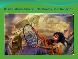 Usina Hidroelétrica de Belo Monte e seus Impactos