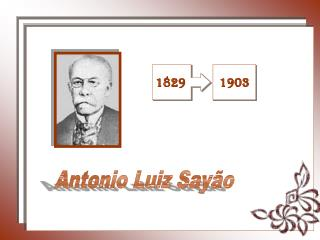Antonio Luiz Sayão