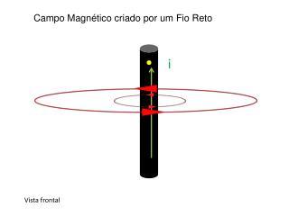 Campo Magnético criado por um Fio Reto