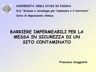 UNIVERSITA  DEGLI STUDI DI PADOVA CLS  Scienze e tecnologie per l ambiente e il territorio  Corso di depurazione chimica