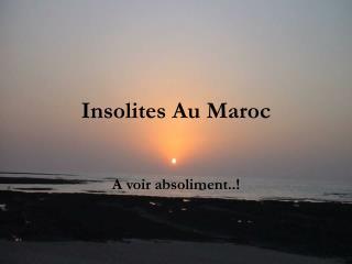 Insolites Au Maroc