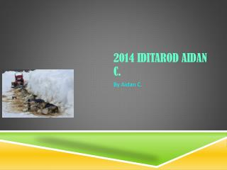 2014 Iditarod Aidan C.