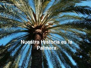 Nuestra Historia es la Palmera