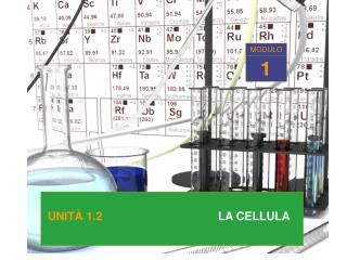 UNITA  1.2   LA CELLULA