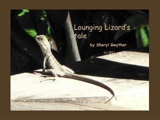 Lounging  Lizard's  tale by  Sheryl  Gwyther   (c) 2011