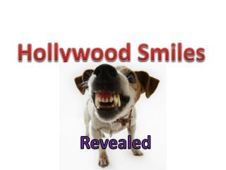 Hollywood Smiles
