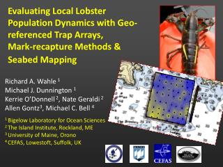 Evaluating Local Lobster Population Dynamics with Geo-referenced Trap Arrays,