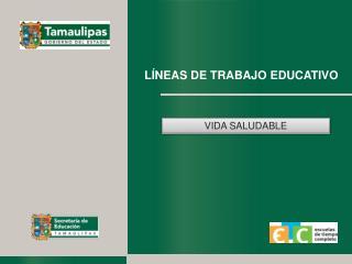 LÍNEAS DE TRABAJO EDUCATIVO