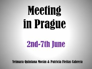 Meeting in Prague