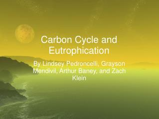 Carbon Cycle and Eutrophication