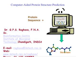 Computer-Aided Protein Structure Prediction