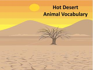 Hot Desert  Animal Vocabulary