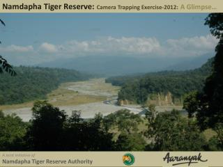 Namdapha Tiger Reserve:  Camera Trapping Exercise-2012: A Glimpse…