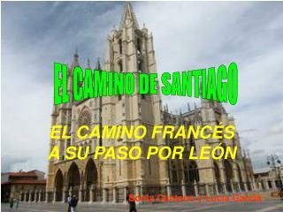 EL CAMINO FRANCÉS A SU PASO POR LEÓN