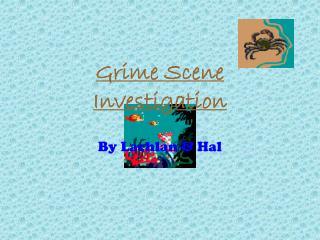 Grime Scene Investigation
