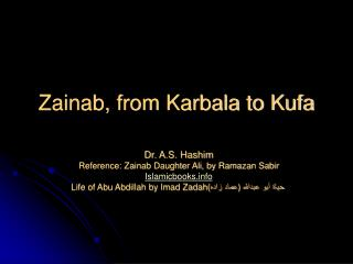 Zainab, from Karbala to Kufa