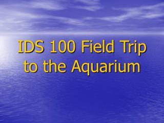 IDS 100 Field Trip  to the Aquarium