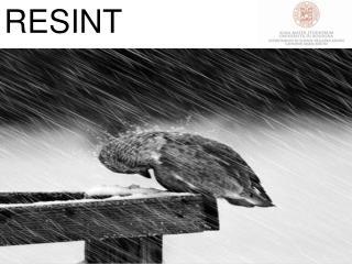 RESINT