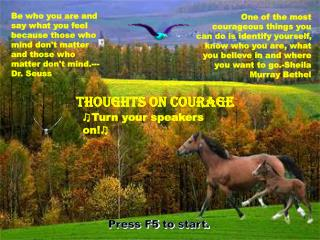 Thoughts on Courage