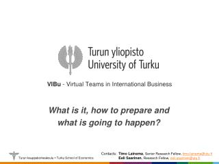 VIBu  - Virtual Teams in International Business