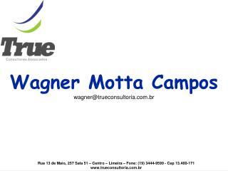 Wagner Motta Campos wagner@trueconsultoria.br
