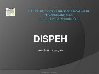 Dispositif pour l'Insertion Sociale et Professionnelle  des Elèves Handicapés