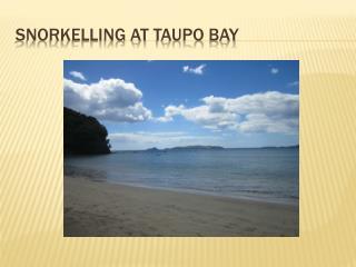 Snorkelling At  taupo  bay