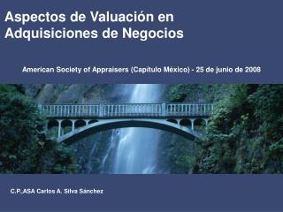 Aspectos de Valuaci�n en Adquisiciones de Negocios